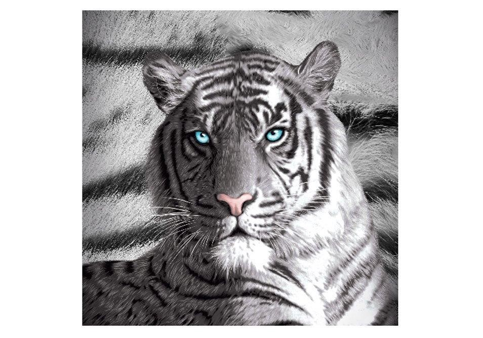Blue Eyes Striped Tiger Filled Cushion by Just Home